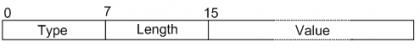 Options字段的格式 .png