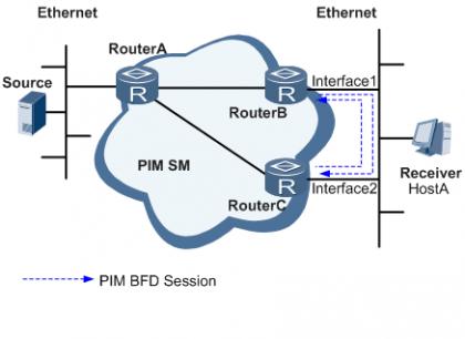 PIM BFD原理图 .png